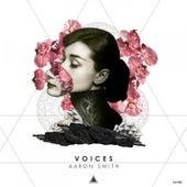 Voices von Aaron Smith