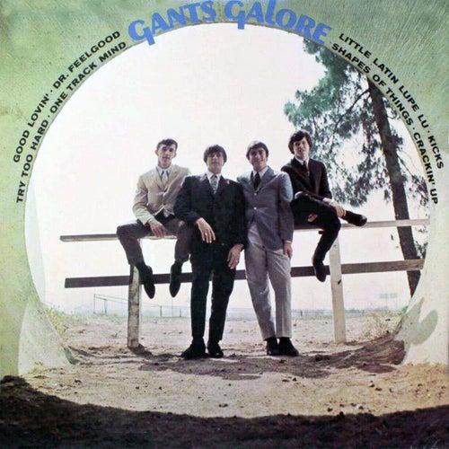 Gants Galore by The Gants