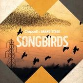 Song Birds de Various Artists