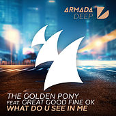What Do U See In Me by The Golden Pony
