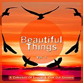 Beautiful Things, Vol. 9 (A Collection of Lounge & Chill out Grooves) de Various Artists