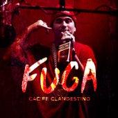 Fuga by Cacife Clandestino
