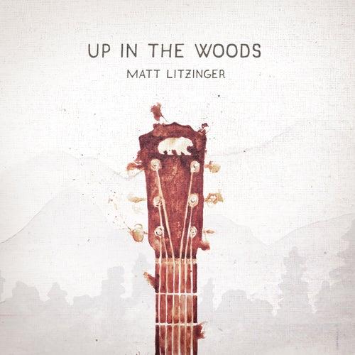 Up in the Woods by Matt Litzinger