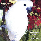 Freeflying Dreams by Naomi