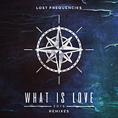 What Is Love 2016 (7 Remixes) by Lost Frequencies