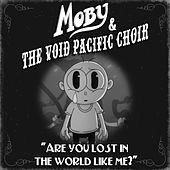 Are You Lost In The World Like Me? de The Void Pacific Choir
