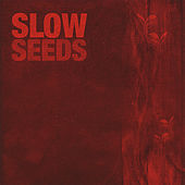 Seeds by Slow