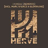 I Know (Remixes) by Hervé
