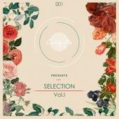 Candy Flip Presents Selection Vol. 1 de Various Artists
