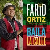 Baila en la Calle by Farid Ortiz