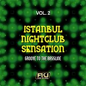 Istanbul Nightclub Sensation, Vol. 2 (Groove to the Bassline) by Various Artists