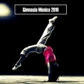 Gimnasia Música 2016 de Various Artists