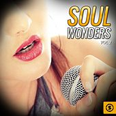 Soul Wonders, Vol. 2 by Various Artists