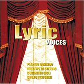 Lyric voices, Vol. 3 by Various Artists