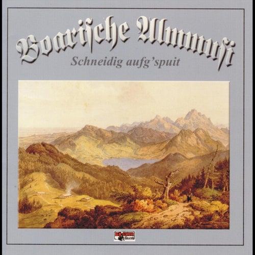 Schneidig aufg'spuit by Boarische Almmusi