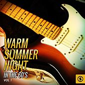 Warm Summer Night in the 60's, Vol. 1 by Various Artists