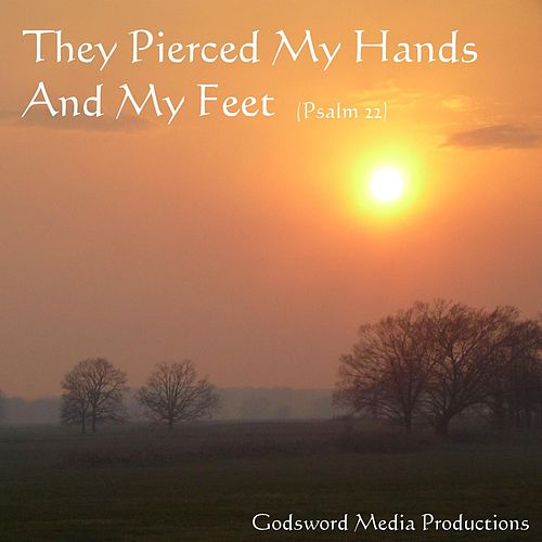 They Pierced My Hands and My Feet by Martin Smith