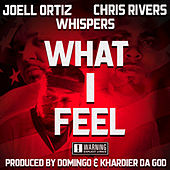 What I Feel de Joell Ortiz