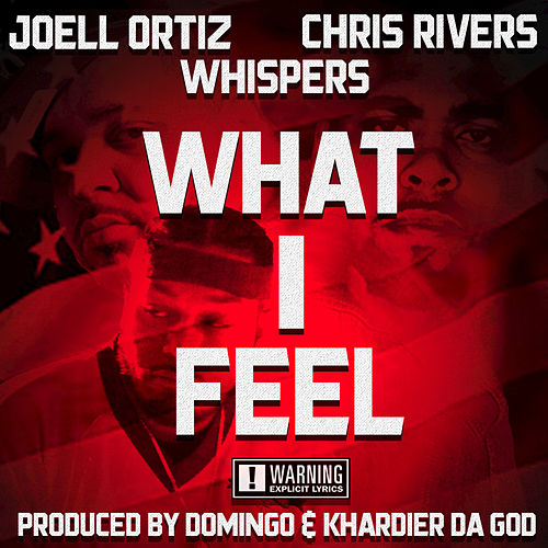 What I Feel by Joell Ortiz