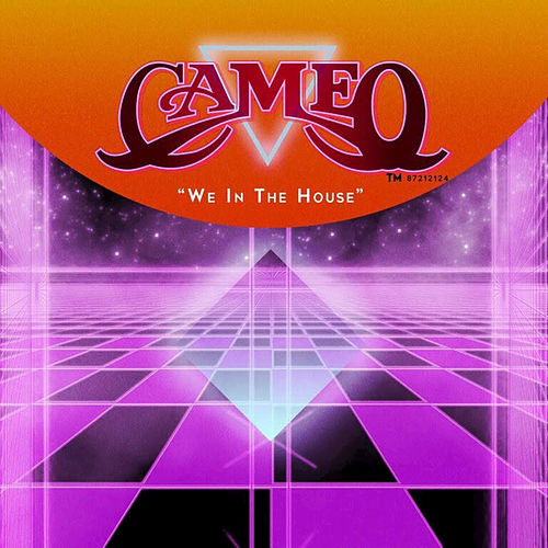We in the House - Single by Cameo