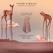 Prophecy Remixes de Tchami