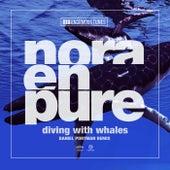 Diving with Whales (Daniel Portman Remixes) von Nora En Pure