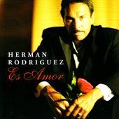Es Amor by Herman Rodriguez