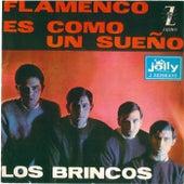 Flamenco - Es come un sueño by Los Brincos