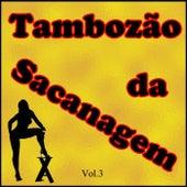 Tambozão da Sacanagem, Vol. 3 (Ao Vivo) by Various Artists