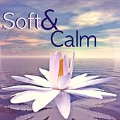 Soft and Calm - Sweet Music for Restful Sleep, Newborns Sleep Aid with Gurgling Stream and Gentle Natural Sounds to Soothe and Heal, Real Sound of Nature for Relaxation de Ambient Music Therapy