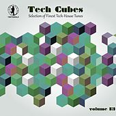 Tech Cubes, Vol. 13 - Selection of Finest Tech-House Tunes! by Various Artists