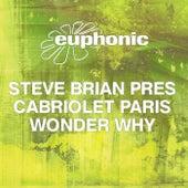 Wonder Why by Steve Brian