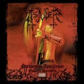 Norwegian Apocalypse (Live) by Tsjuder