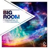 Big Room Essentials, Vol. 1 von Various Artists
