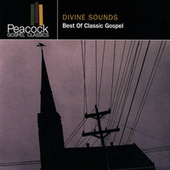 Divine Sounds: Best Of Classic Gospel de Various Artists