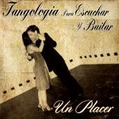 Un Placer (Tangología Para Escuchar y Bailar) von Various Artists