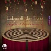 Labyrinth der Töne, Vol. 3 - Deep & Tech-House Music by Various Artists