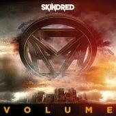 Volume de Skindred