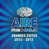 Aire Fm 100.3 Grandes Éxitos 2012-2013 by Various Artists
