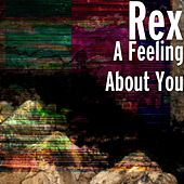 A Feeling About You by Rex