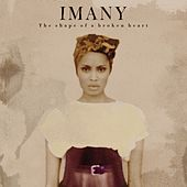 The Shape of a Broken Heart by Imany