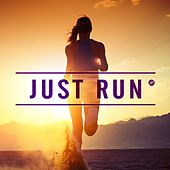 Just Run von Various Artists