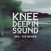 2016: The Review de Various Artists