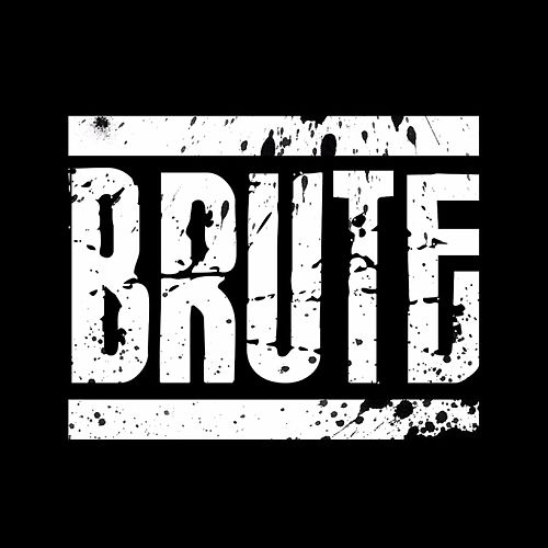 Problem by Brute.