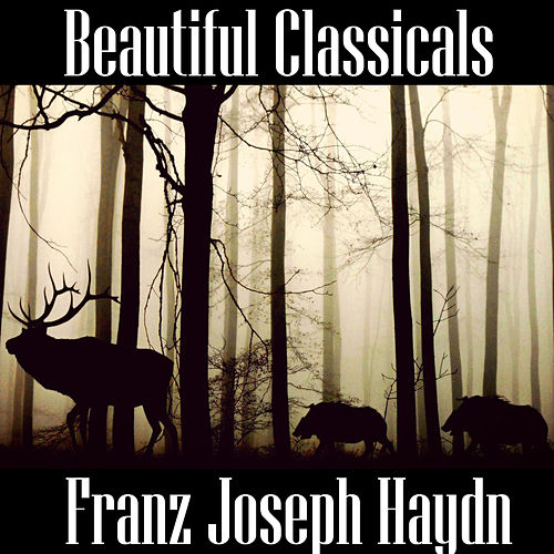 Beautiful Classicals: Franz Joseph Haydn by Franz Joseph Haydn
