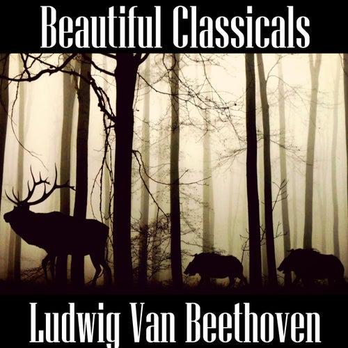 Beautiful Classicals: Ludwig van Beethoven by Ludwig van Beethoven