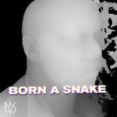 Born A Snake - Single by P.O.S (hip-hop)