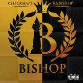 Checkmate / R&Bishop by Bishop