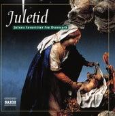 Juletid: Julens favoritter fra Danmark by Various Artists