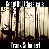 Beautiful Classicals: Franz Schubert by Franz Schubert